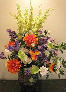 法人向け レンタルフラワー ギフト 贈答 観葉植物 胡蝶蘭 フロー